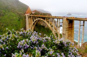 Bixby Bridge, Big Sur Marathon